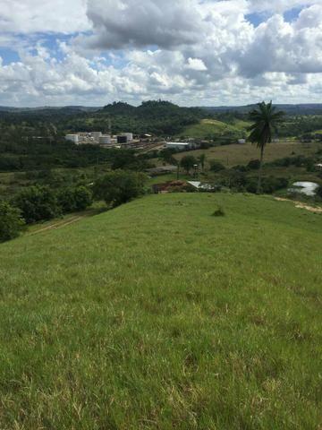 Fazenda na Cidade de Mata de São João - Foto 12