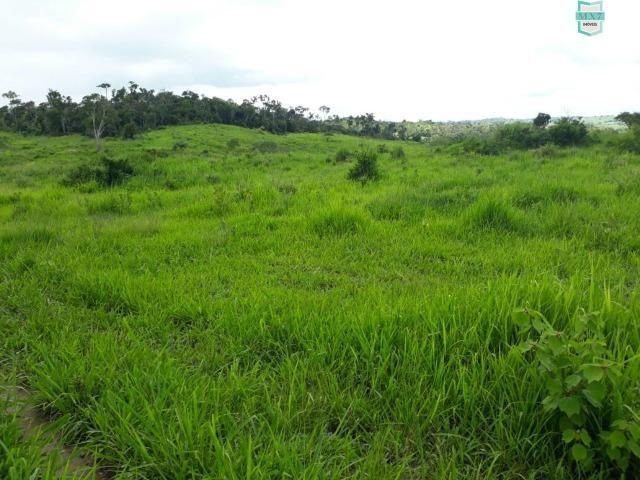 Itaju do Colônia. Fazenda de 400 Hectares. para pecuária. - Foto 5