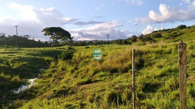 Itagibá. Fazenda pecuária de 375 Hectares com toda infraestrutura. - Foto 7