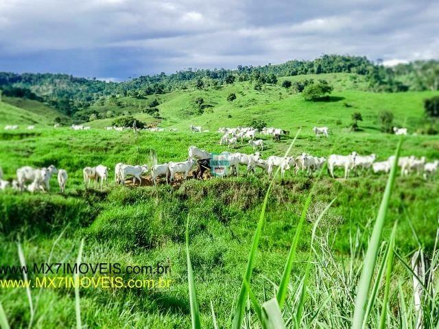 Itaju do Colônia. Linda Fazenda pecuária de 375 Hectares - Foto 5