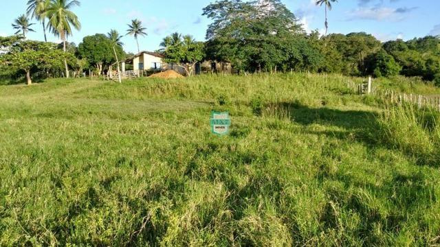 Itagibá. Fazenda pecuária de 375 Hectares com toda infraestrutura. - Foto 3