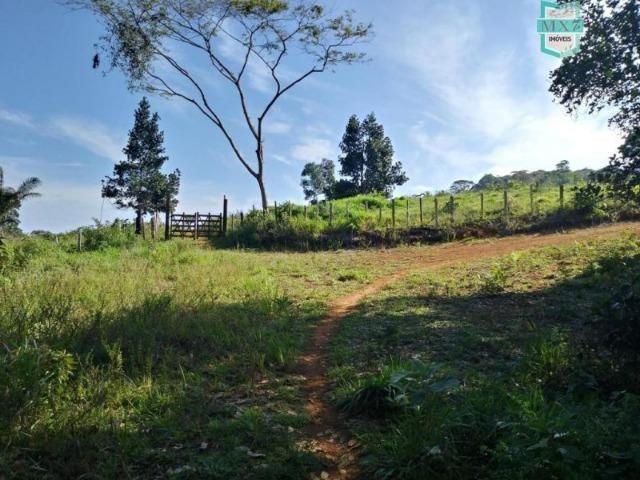 Maraú. Fazenda de 710 Hectares com diversas atividades de produção e rica em água - Foto 15