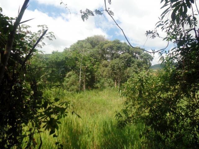 Chácara à venda em Bom jesus do bagre, Belo oriente cod:356 - Foto 18
