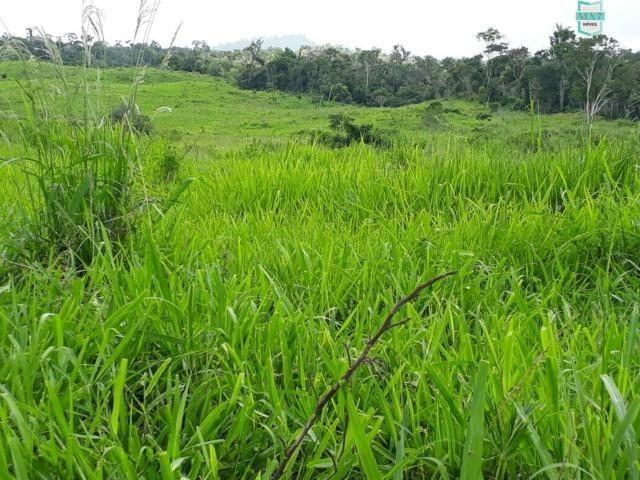 Itaju do Colônia. Fazenda de 400 Hectares. para pecuária. - Foto 6
