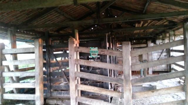 Itagibá. Fazenda pecuária de 375 Hectares com toda infraestrutura. - Foto 11