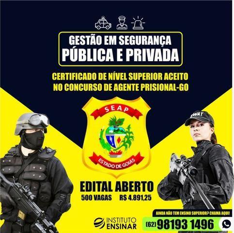 Gestão em Segurança Pública e Privada