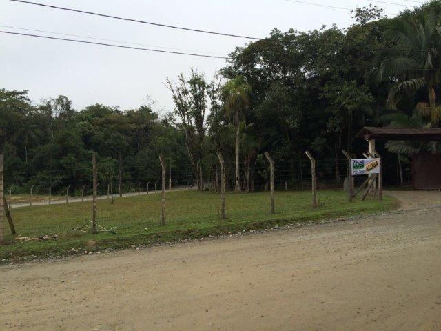 Chácara para alugar em Vila nova, Joinville cod:L58656 - Foto 4