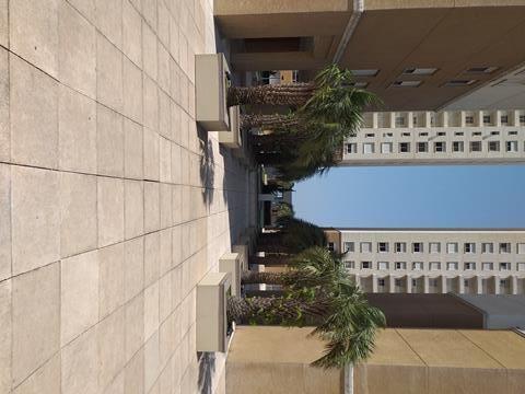 Apartamento para alugar com 3 dormitórios em , cod:I-023031 - Foto 7