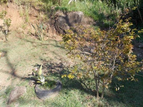 Terreno à venda em Jardim guaçu, São roque cod:59919 - Foto 10