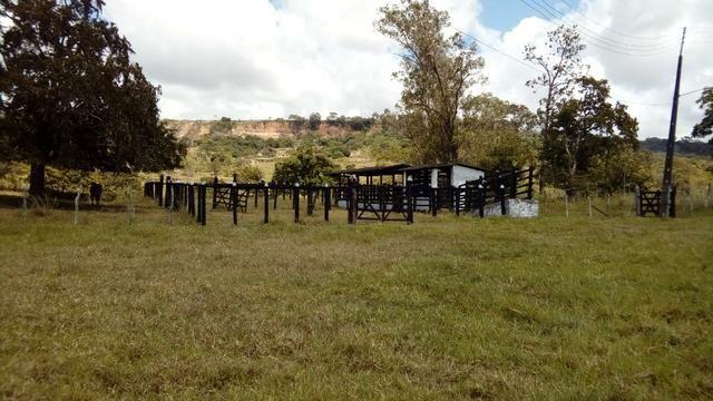 Fazenda 94,5 Ha. Pilar - Foto 6