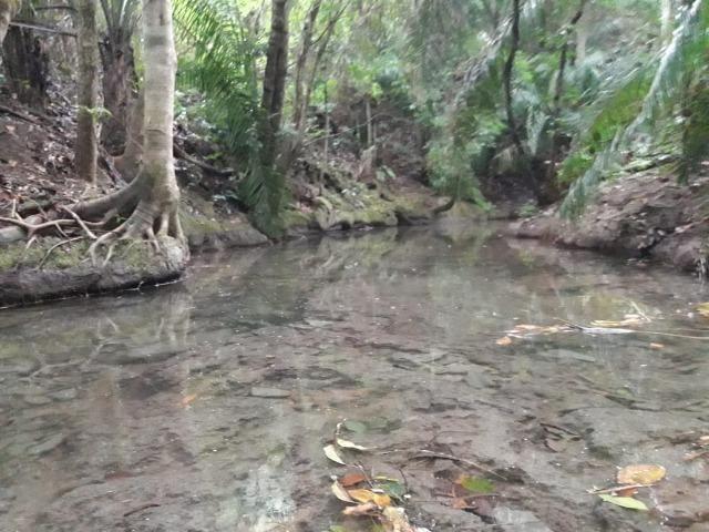 Linda chácara rica em água em Bodoquena - Foto 8