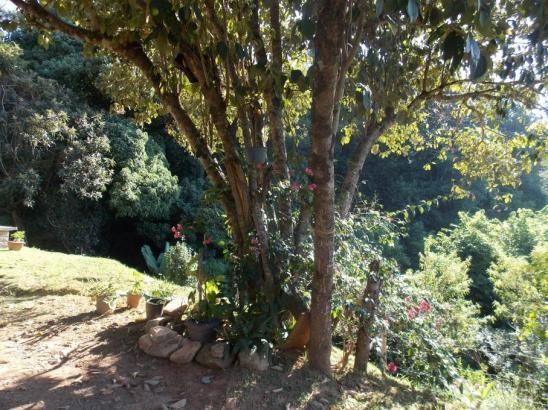 Terreno à venda em Jardim guaçu, São roque cod:59919 - Foto 7
