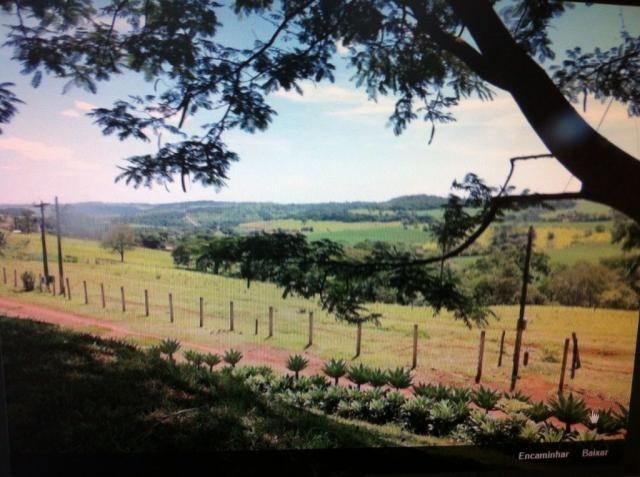 Sítio à venda em Centro, Batatais cod:4569 - Foto 4
