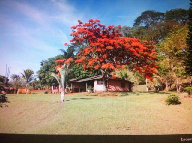 Sítio à venda em Centro, Batatais cod:4569 - Foto 7