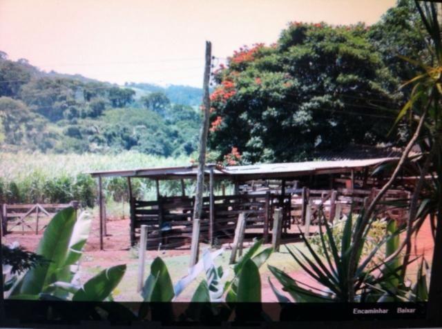 Sítio à venda em Centro, Batatais cod:4569 - Foto 3