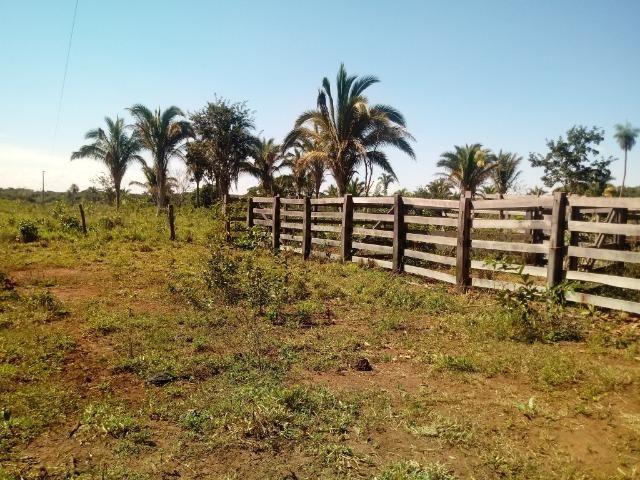 Chácara de 39 hectares em Acorizal ! - Foto 12