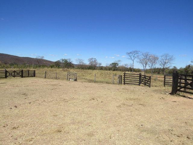 Fazenda em Augusto de Lima com área de 350 há, toda formada - Foto 13