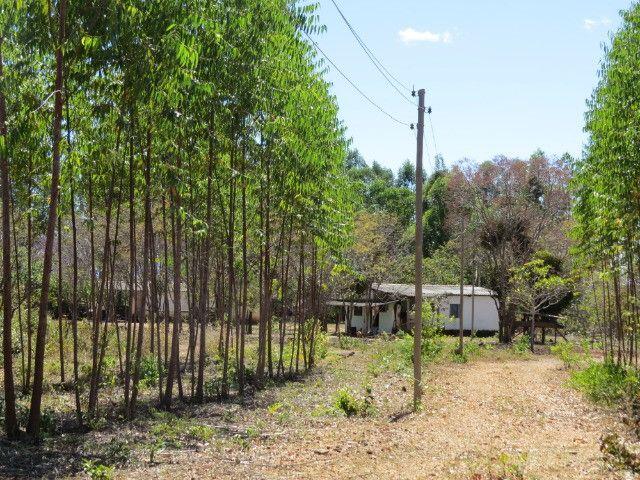 Fazenda com área de 600 há, localizada à 20 km/Corinto - Foto 16