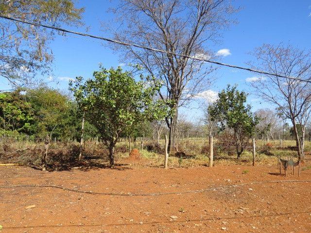 Fazenda em Corinto com área de 100 há, sede boa, curral, 70% formada - Foto 17