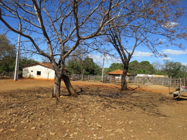 Fazenda em Corinto com área de 100 há, sede boa, curral, 70% formada - Foto 5