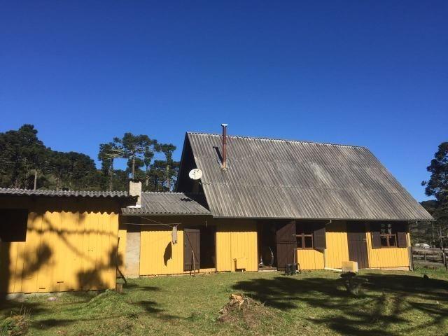 Sitio em Urubici /chácara em Urubici