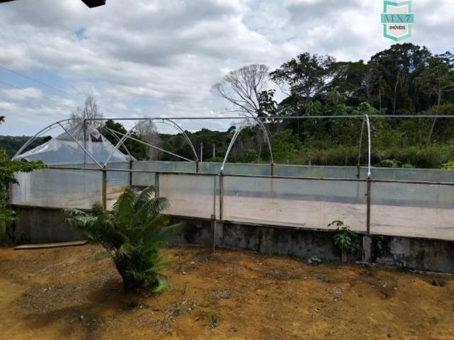 Maraú. Fazenda de 710 Hectares com diversas atividades de produção e rica em água - Foto 11