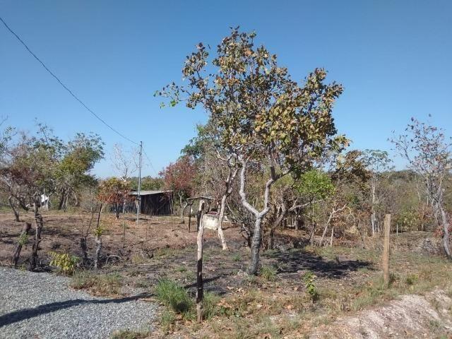 Chácara km 22 estrada da guia - Foto 5