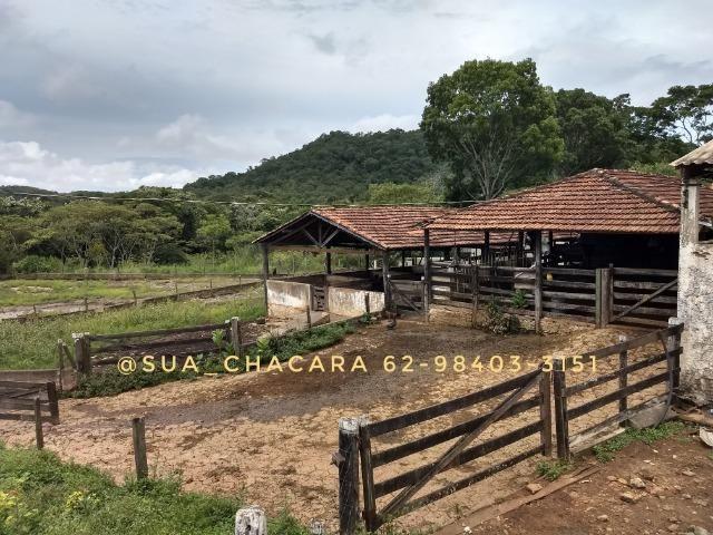 25 alqueires Porteira Fechada Goianira- GO - Foto 19