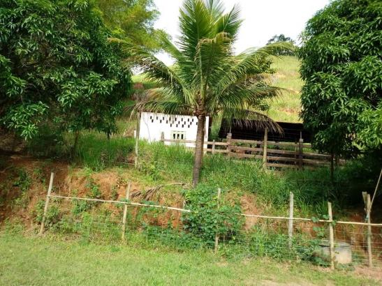 Sítio à venda em Córrego dos monos, Mesquita cod:559 - Foto 3