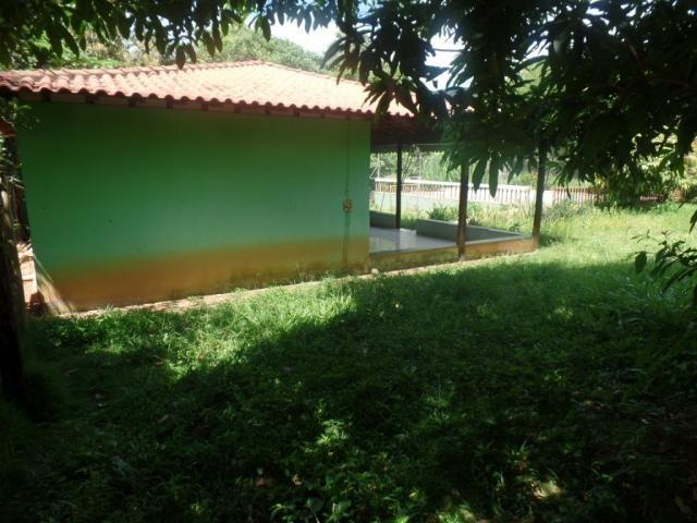 Chácara à venda em Bom jesus do bagre, Belo oriente cod:356 - Foto 4