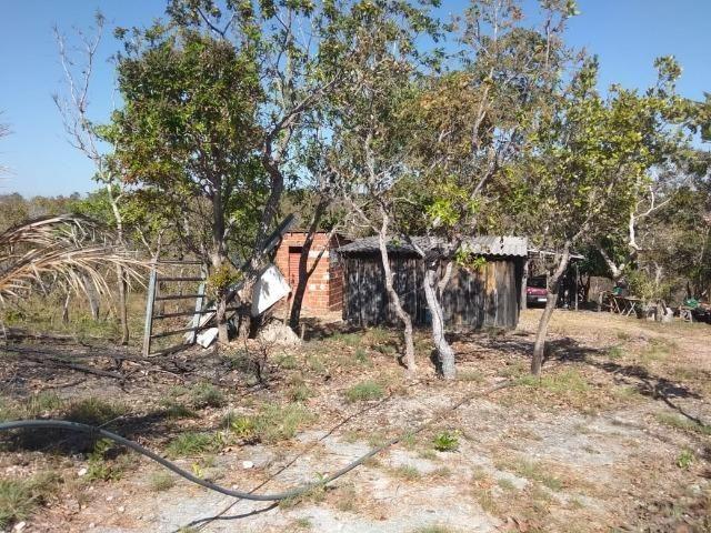Chácara km 22 estrada da guia - Foto 9