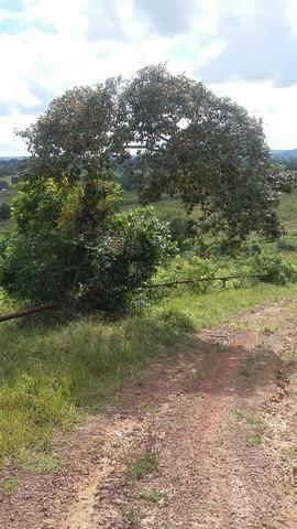 Fazenda na Cidade de Mata de São João - Foto 18