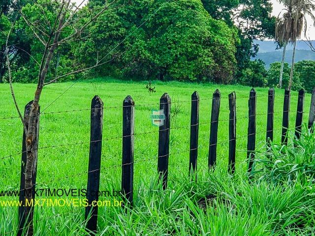 Itaju do Colônia. Linda Fazenda pecuária de 375 Hectares - Foto 9