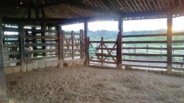 Itagibá. Fazenda pecuária de 375 Hectares com toda infraestrutura. - Foto 10