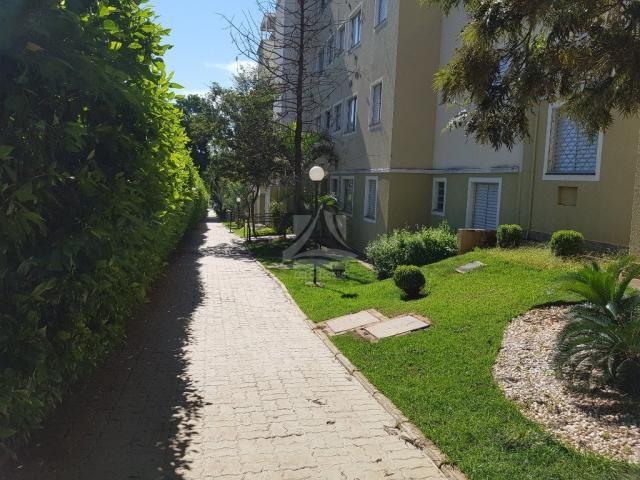 Apartamento à venda com 2 dormitórios em City ribeirão, Ribeirão preto cod:58729 - Foto 4