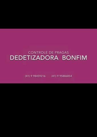 Dedetizadora Bonfim.cont *