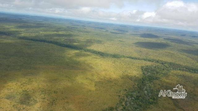 Fazenda à venda, 690000000 m² por r$ 172.500.000,00 - centro - fernando falcão/ma - Foto 5