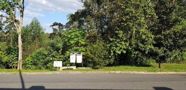 Loteamento/condomínio à venda em Granja viana ii, Cotia cod:61917 - Foto 6