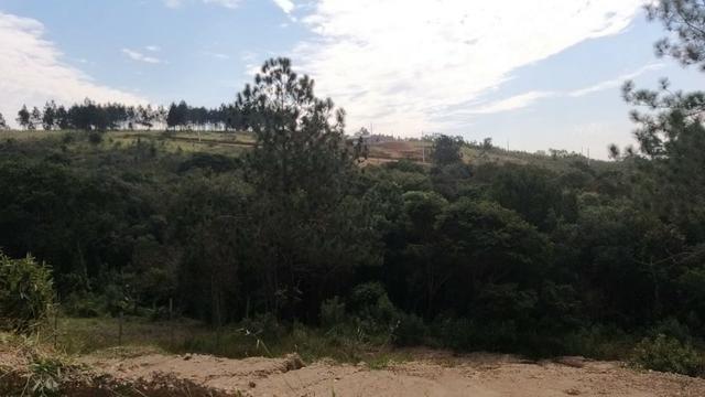 _Vendo terreno com ótimo acesso_ - Foto 3