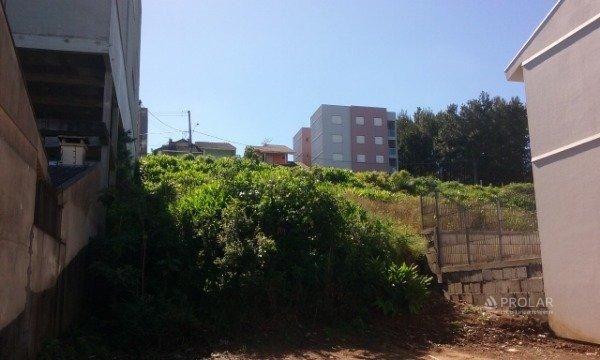 Terreno à venda em Kayser, Caxias do sul cod:11491 - Foto 3
