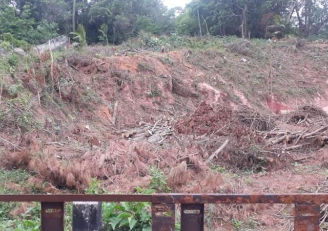 Terreno à venda em Vila santo antônio, Cotia cod:62415 - Foto 2