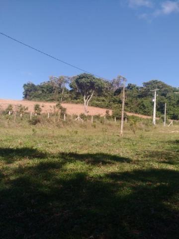 Chácara à venda em Rio do cacho, Contenda cod:CH00012 - Foto 2