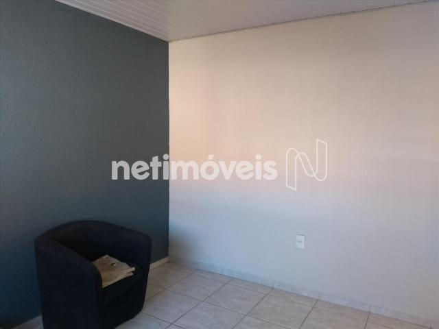 Casa à venda com 5 dormitórios em Conjunto celso machado, Belo horizonte cod:760423 - Foto 16