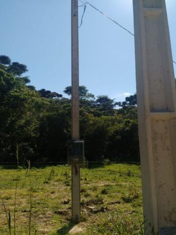 Chácara à venda em Rio do cacho, Contenda cod:CH00012 - Foto 13