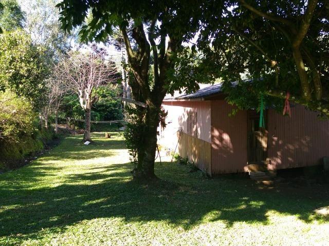 Chácara em Morro Reuter com 2 casas, pomar, mata, araucárias - Foto 9