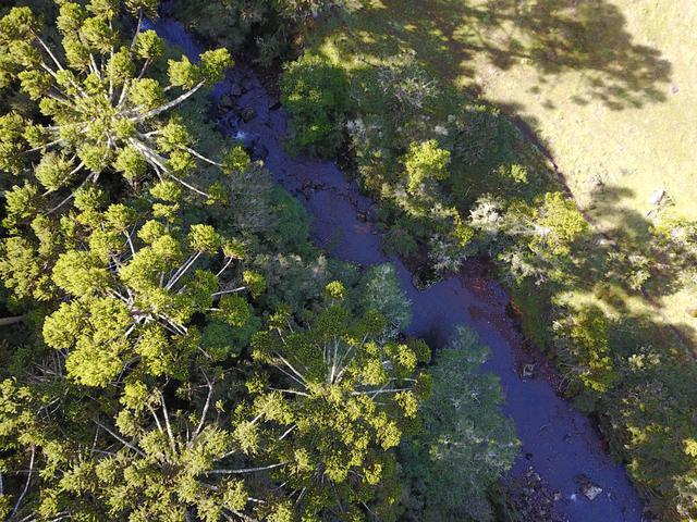 Terreno em Urubici - Foto 6