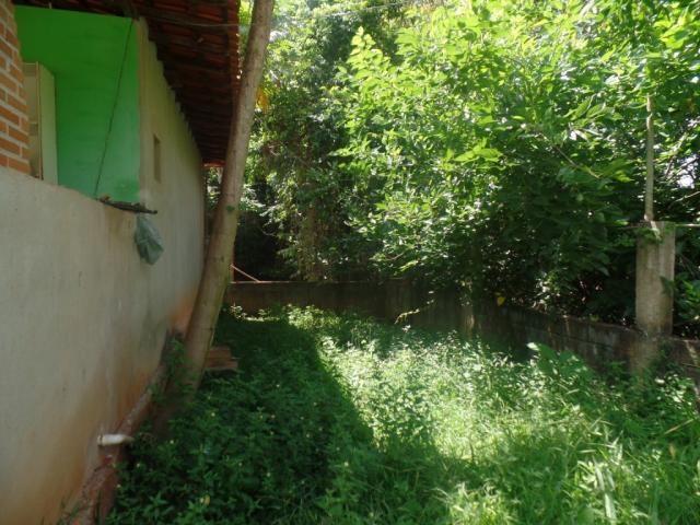 Chácara à venda em Bom jesus do bagre, Belo oriente cod:356 - Foto 14