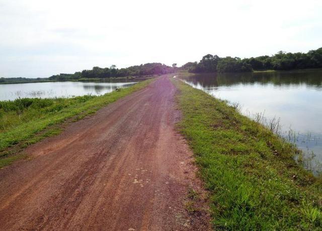 Ótima Fazenda a 50km de Cuiabá com 660ha - Foto 5