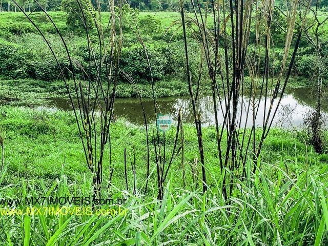 Itaju do Colônia. Linda Fazenda pecuária de 375 Hectares - Foto 15