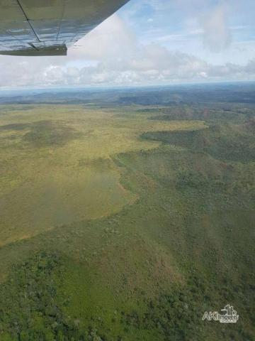 Fazenda à venda, 690000000 m² por r$ 172.500.000,00 - centro - fernando falcão/ma - Foto 2